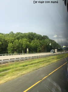 Camino de Washington.