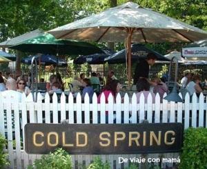 cold-spring-depot