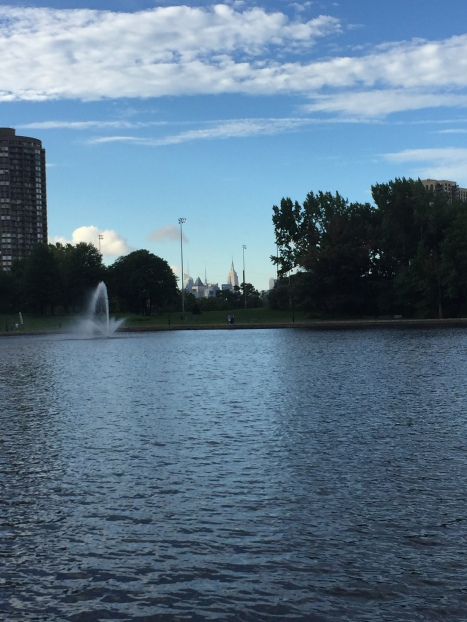 IMG_3782 desde parque 80