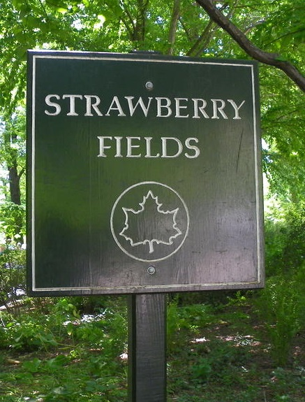 strawberyfields